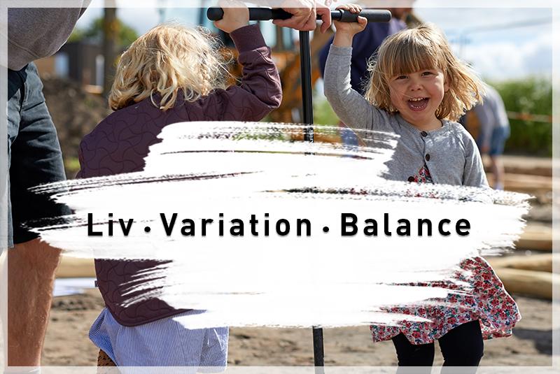 Værdierne i Nye - Liv, variation og balance